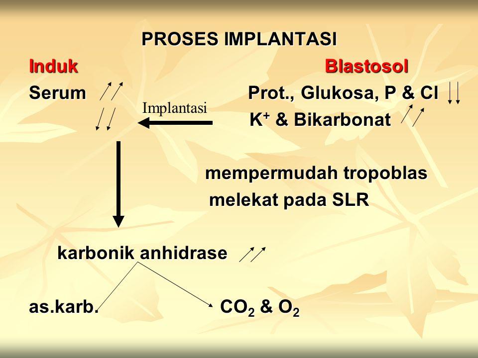 PROSES IMPLANTASI Induk Blastosol Serum Prot., Glukosa, P & Cl K + & Bikarbonat K + & Bikarbonat mempermudah tropoblas mempermudah tropoblas melekat p