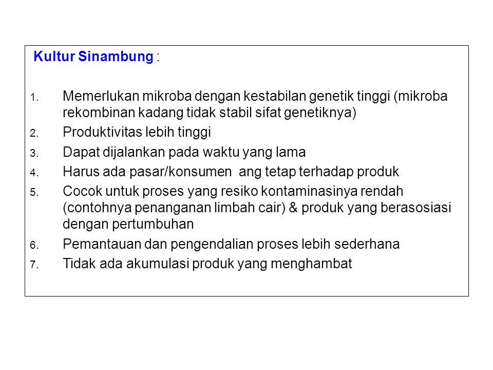 Kultur Sinambung : 1.