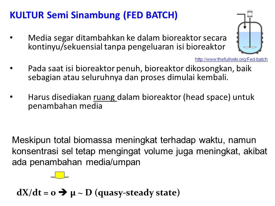 KULTUR Semi Sinambung (FED BATCH) Media segar ditambahkan ke dalam bioreaktor secara kontinyu/sekuensial tanpa pengeluaran isi bioreaktor Pada saat isi bioreaktor penuh, bioreaktor dikosongkan, baik sebagian atau seluruhnya dan proses dimulai kembali.