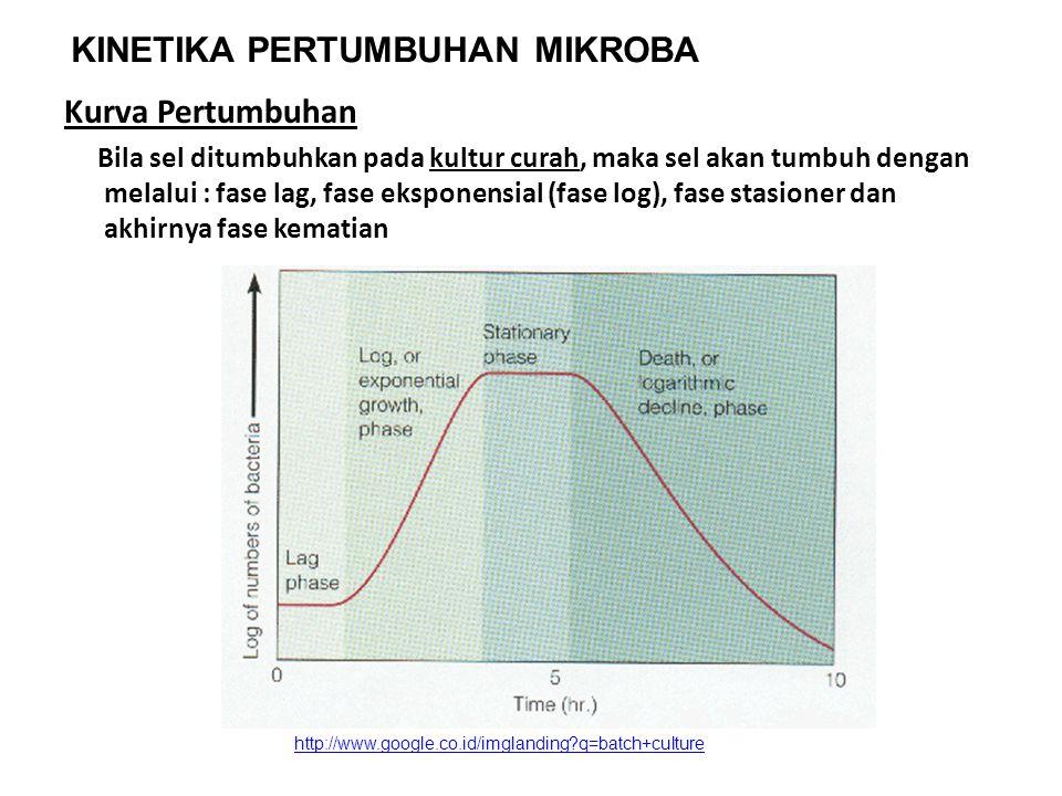Kurva Pertumbuhan Bila sel ditumbuhkan pada kultur curah, maka sel akan tumbuh dengan melalui : fase lag, fase eksponensial (fase log), fase stasioner