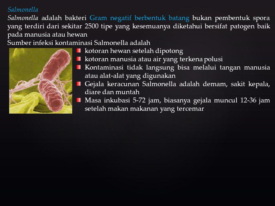 Salmonella Salmonella adalah bakteri Gram negatif berbentuk batang bukan pembentuk spora yang terdiri dari sekitar 2500 tipe yang kesemuanya diketahui bersifat patogen baik pada manusia atau hewan Sumber infeksi kontaminasi Salmonella adalah kotoran hewan setelah dipotong kotoran manusia atau air yang terkena polusi Kontaminasi tidak langsung bisa melalui tangan manusia atau alat-alat yang digunakan Gejala keracunan Salmonella adalah demam, sakit kepala, diare dan muntah Masa inkubasi 5-72 jam, biasanya gejala muncul 12-36 jam setelah makan makanan yang tercemar