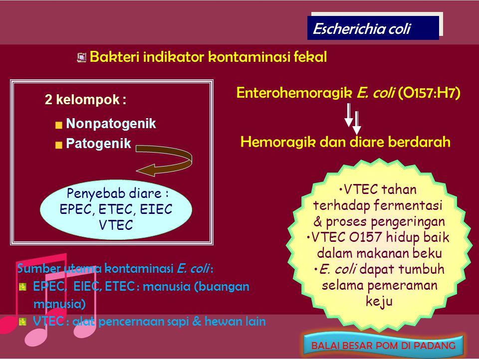 Clostridium botulinum Gram positif, motil, anaerobik obligat, berbentuk batang, spora oval Gejala : lemas, figo, vertigo, pandangan buram, kesulitan berbicara dan menelan Toksinnya tidak tahan panas, sangat toksik Spora dan toksinnya tahan terhadap pembekuan Spora tahan terhadap radiasi Produksi toksin pada pH inaktif pada suhu 75-80 o C Tidak dapat tumbuh bila konsentrasi garam > 10 % Sumber Kontaminasi : Tanah (sayuran akar ) BALAI BESAR POM DI PADANG