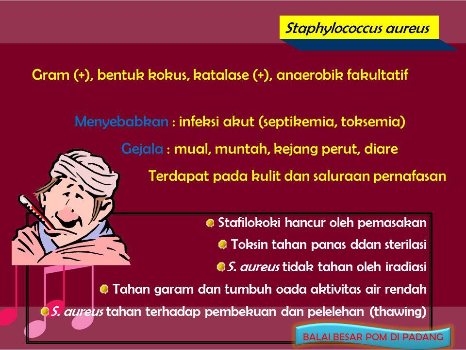 Pseudomonas cocovenenans Gram (-), batang, katalase (+), oksidasi (-), motil Memproduksi 2 senyawa beracun dalam tempe bongkrek : asam bongkrek (tdk berwarna) toksoflavin (kuning) Gejala setelah keracunan : setelah 4-6 jam sakit perut, keringat berlebihan, lelah & mual, koma Asam bongkrek sangat tahan panas dan lebih toksik dari toksoflavin Dilarang memproduksi tempe bongkrek BALAI BESAR POM DI PADANG