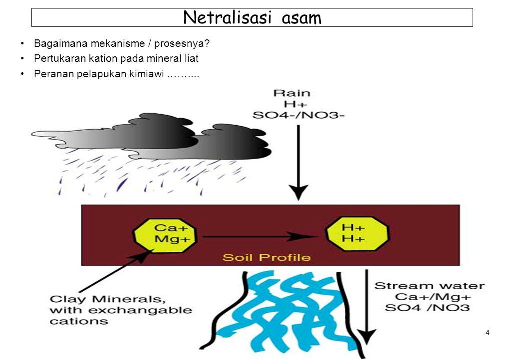 14 Netralisasi asam Bagaimana mekanisme / prosesnya? Pertukaran kation pada mineral liat Peranan pelapukan kimiawi ……....