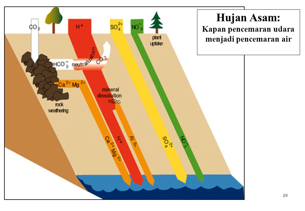 29 Hujan Asam: Kapan pencemaran udara menjadi pencemaran air
