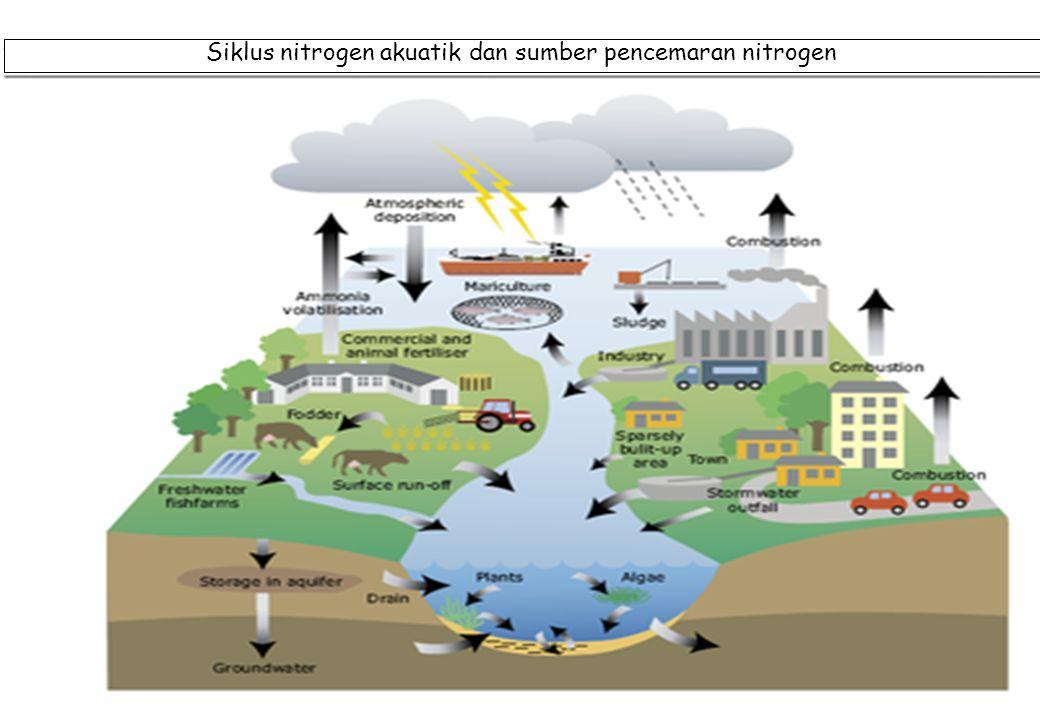 40 Siklus nitrogen akuatik dan sumber pencemaran nitrogen