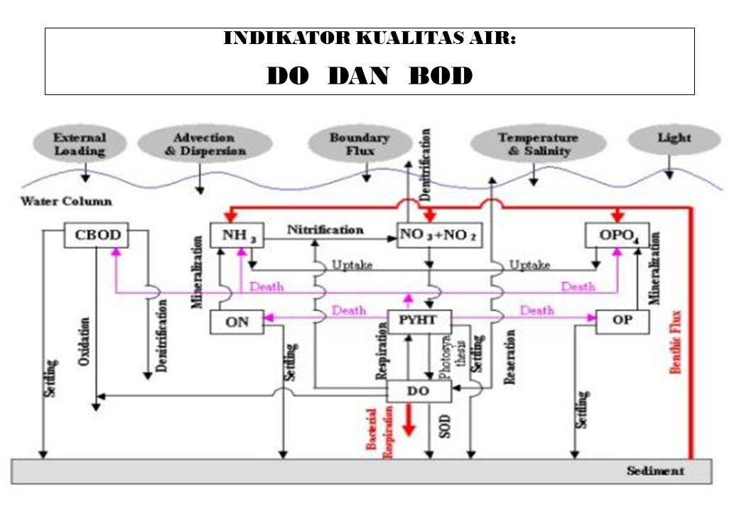 73 INDIKATOR KUALITAS AIR: DO DAN BOD