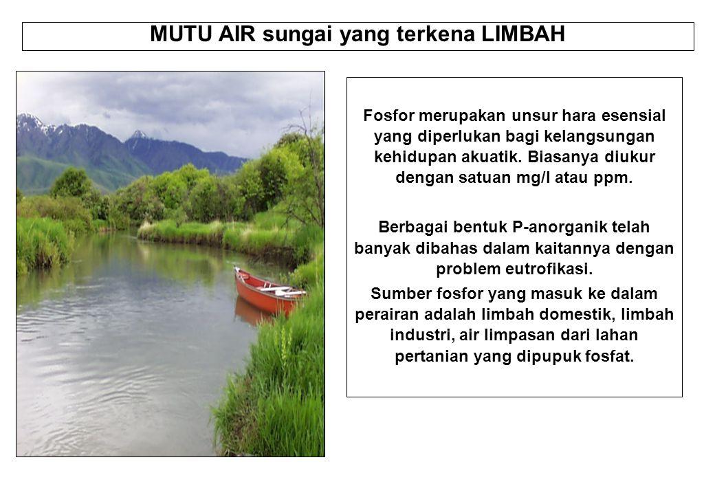 MUTU AIR sungai yang terkena LIMBAH Fosfor merupakan unsur hara esensial yang diperlukan bagi kelangsungan kehidupan akuatik. Biasanya diukur dengan s