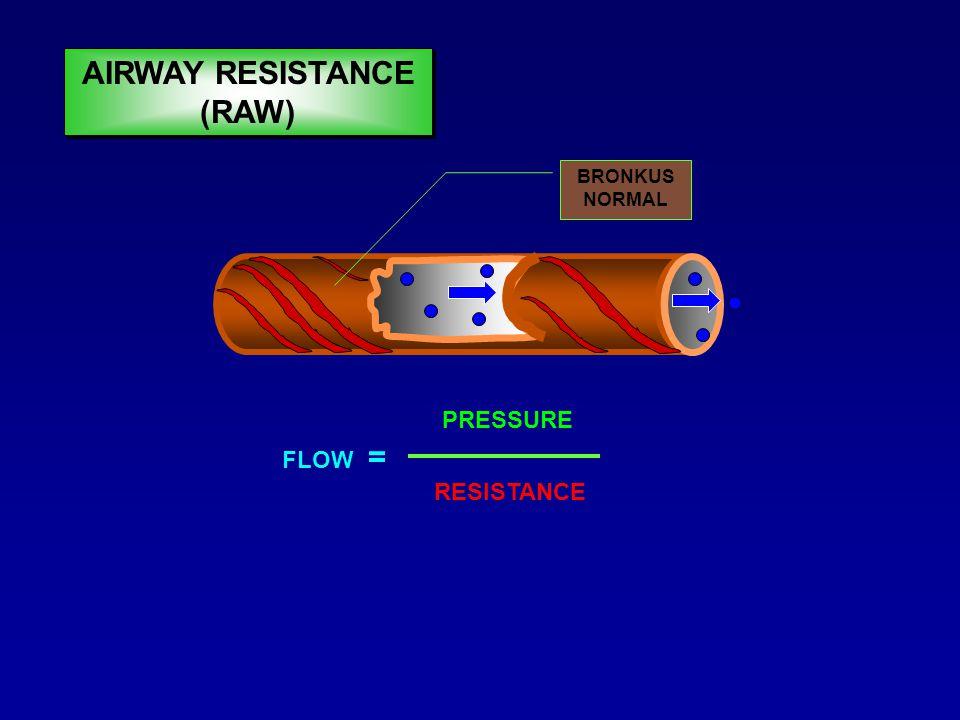 – Membatasi jumlah gas yg mengalir melewati jalan nafas (obstruksi jalan nafas) – Flow = pressure/resistance – Jika R  Flow – Ditentukan oleh besarnya diameter jalan nafas – Pada nafas spontan, jika resistance me, secara normal respon tubuh adalah meningkatkan usaha nafas (WoB = RR >>, otot bantu nafas >>) AIRWAY RESISTANCE (RAW)