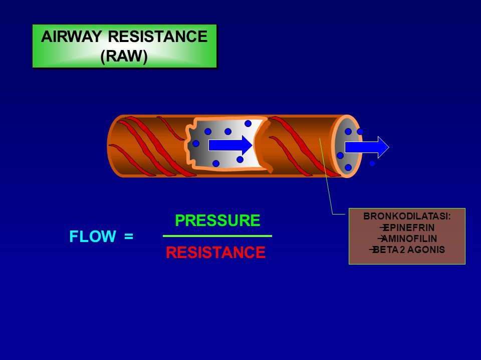 FLOW = PRESSURE RESISTANCE BRONKUS NORMAL AIRWAY RESISTANCE (RAW)