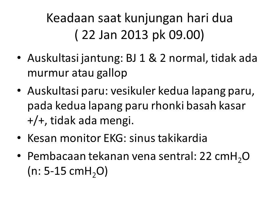 Keadaan saat kunjungan hari dua ( 22 Jan 2013 pk 09.00) Auskultasi jantung: BJ 1 & 2 normal, tidak ada murmur atau gallop Auskultasi paru: vesikuler k