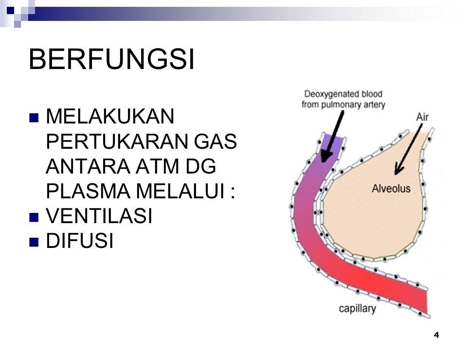 BERFUNGSI MELAKUKAN PERTUKARAN GAS ANTARA ATM DG PLASMA MELALUI : VENTILASI DIFUSI 4