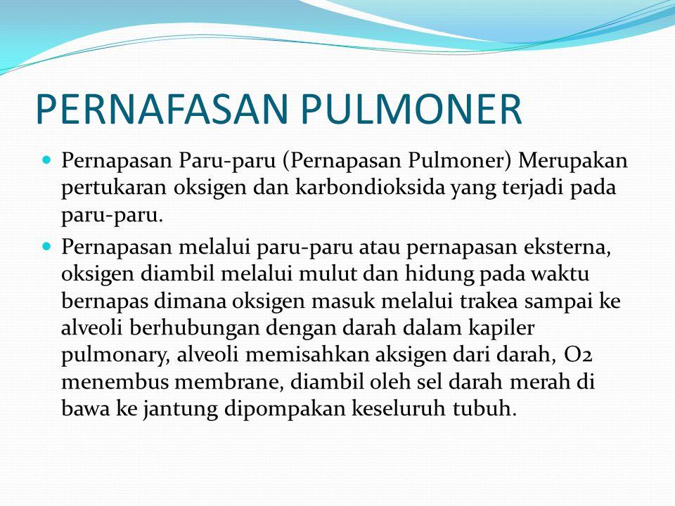 PERNAFASAN PULMONER Pernapasan Paru-paru (Pernapasan Pulmoner) Merupakan pertukaran oksigen dan karbondioksida yang terjadi pada paru-paru. Pernapasan
