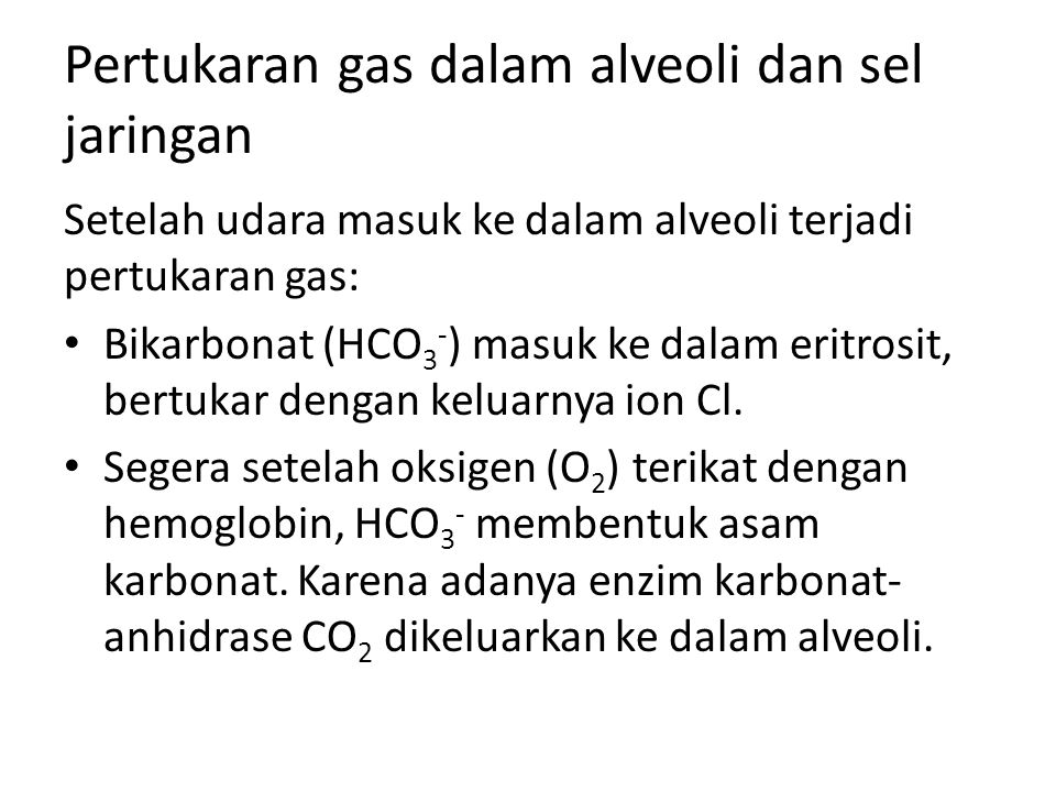 Pertukaran gas dalam alveoli dan sel jaringan Setelah udara masuk ke dalam alveoli terjadi pertukaran gas: Bikarbonat (HCO 3 - ) masuk ke dalam eritro