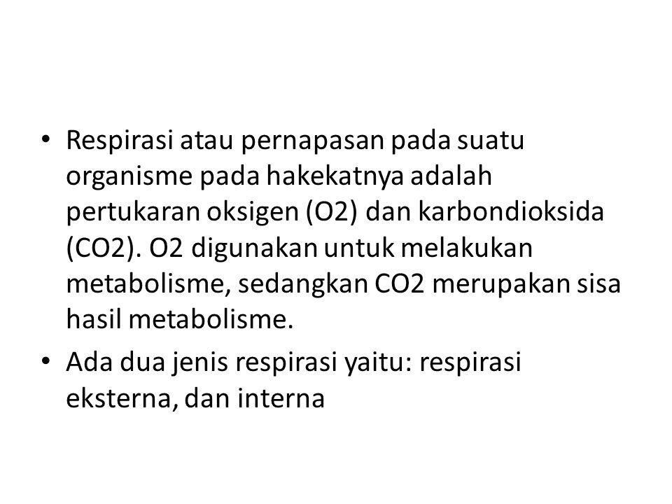 Respirasi atau pernapasan pada suatu organisme pada hakekatnya adalah pertukaran oksigen (O2) dan karbondioksida (CO2). O2 digunakan untuk melakukan m