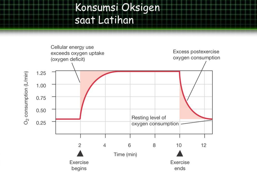 Konsumsi Oksigen saat Latihan