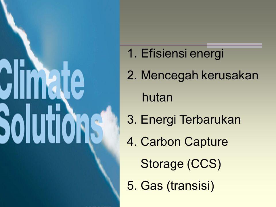 1. Efisiensi energi 2. Mencegah kerusakan hutan 3. Energi Terbarukan 4. Carbon Capture Storage (CCS) 5. Gas (transisi)