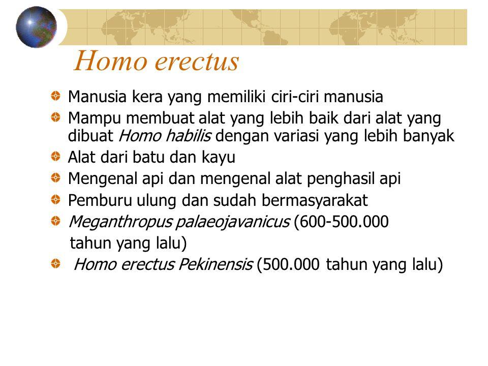 Homo erectus Manusia kera yang memiliki ciri-ciri manusia Mampu membuat alat yang lebih baik dari alat yang dibuat Homo habilis dengan variasi yang lebih banyak Alat dari batu dan kayu Mengenal api dan mengenal alat penghasil api Pemburu ulung dan sudah bermasyarakat Meganthropus palaeojavanicus (600-500.000 tahun yang lalu) Homo erectus Pekinensis (500.000 tahun yang lalu)