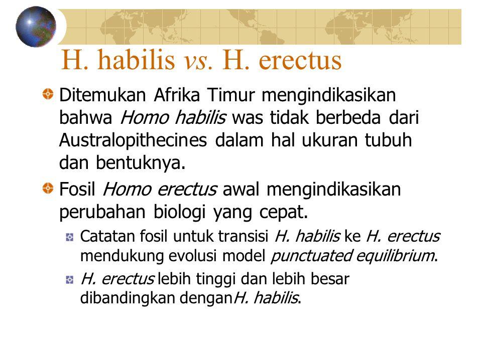 H.habilis vs. H.
