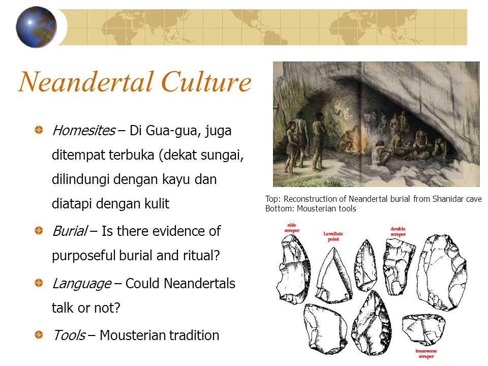 Neandertal Culture Homesites – Di Gua-gua, juga ditempat terbuka (dekat sungai, dilindungi dengan kayu dan diatapi dengan kulit Burial – Is there evidence of purposeful burial and ritual.