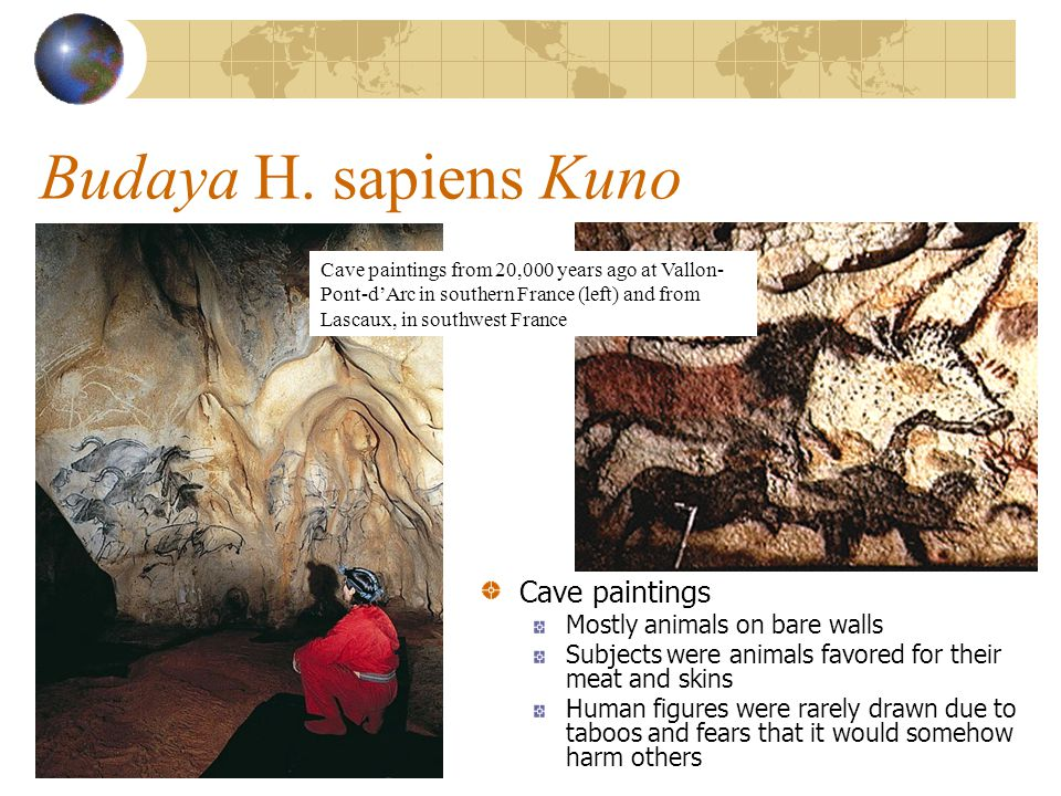 Budaya H. sapiens Kuno Cave paintings Mostly animals on bare walls Subjects were animals favored for their meat and skins Human figures were rarely dr