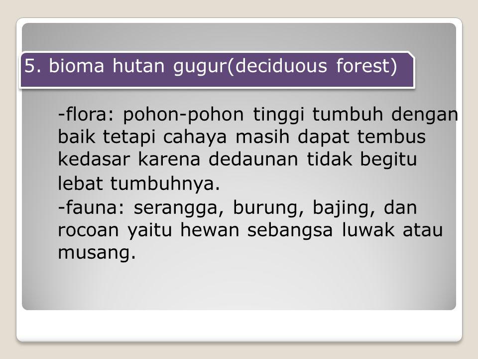 5. bioma hutan gugur(deciduous forest) -flora: pohon-pohon tinggi tumbuh dengan baik tetapi cahaya masih dapat tembus kedasar karena dedaunan tidak be