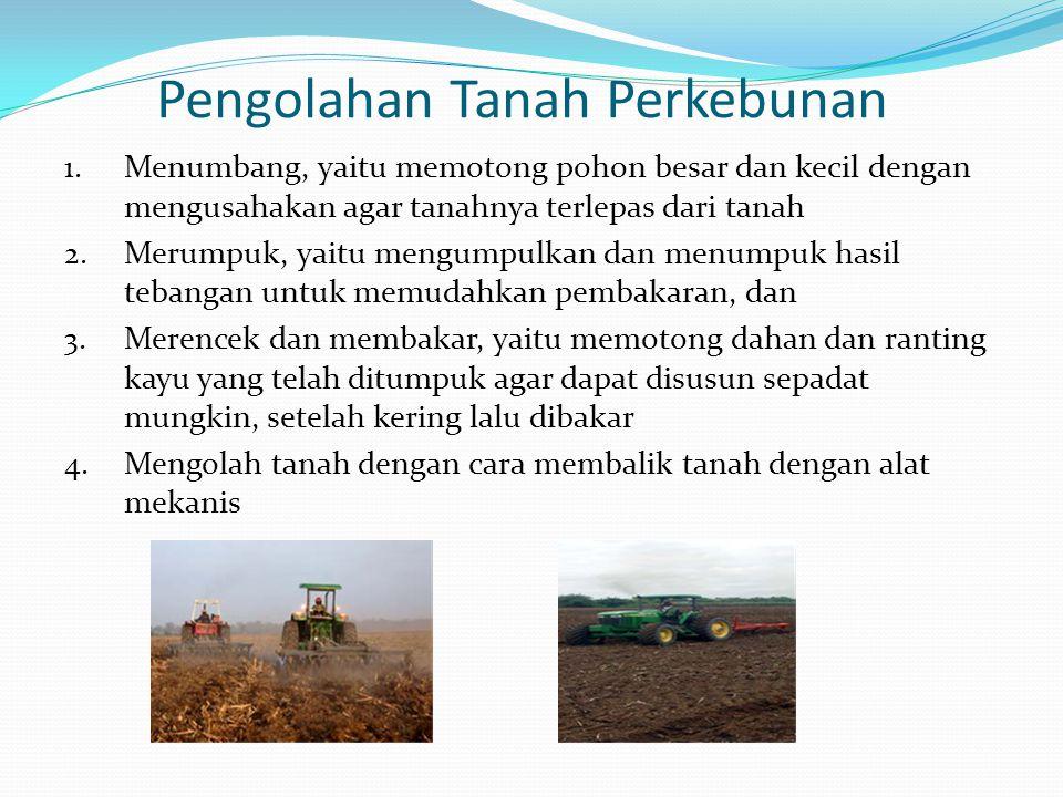 Pengolahan Tanah Perkebunan 1.