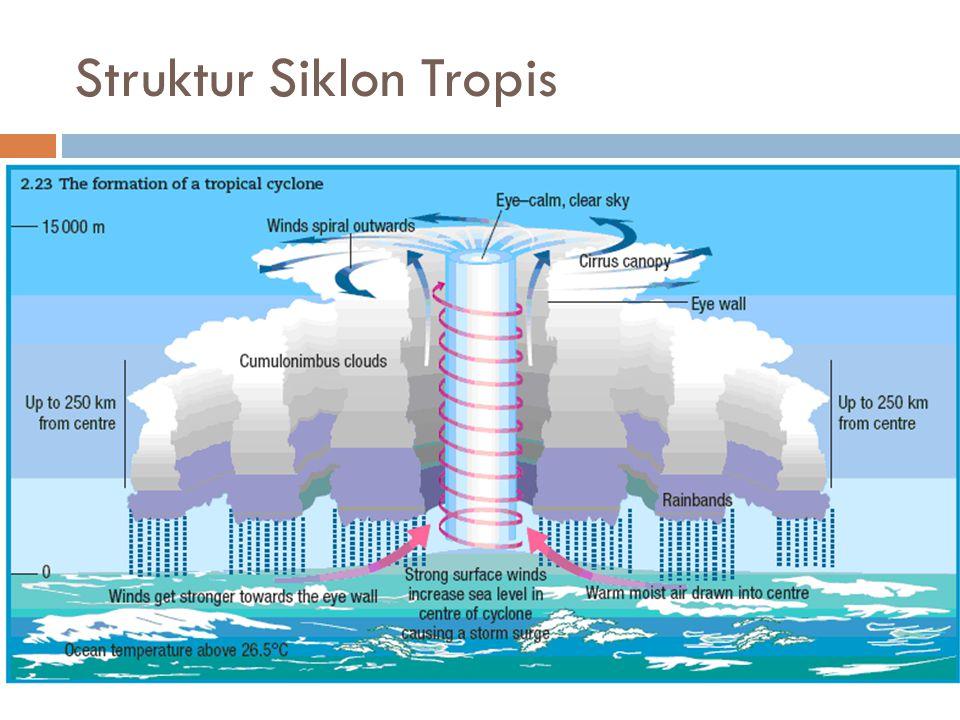Struktur Siklon Tropis