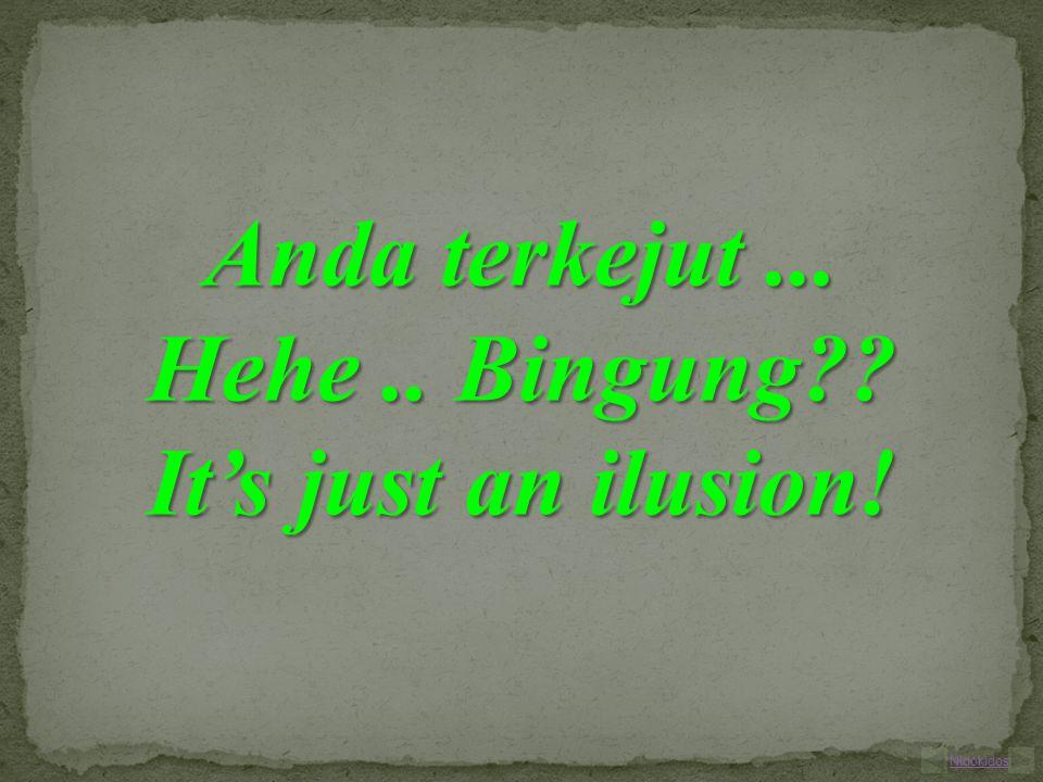 Anda terkejut... Hehe.. Bingung It's just an ilusion! Nidokidos