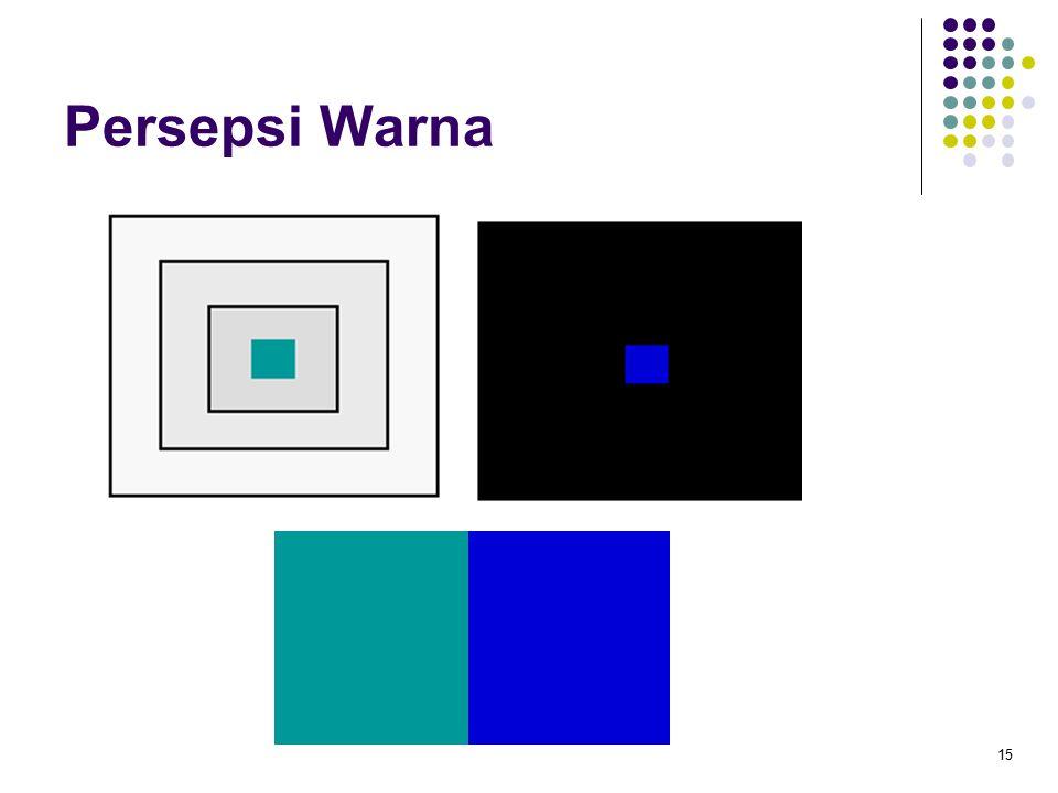 Persepsi Warna 15