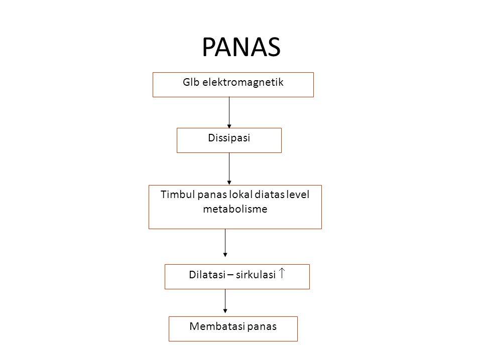PANAS Glb elektromagnetik Dissipasi Timbul panas lokal diatas level metabolisme Dilatasi – sirkulasi  Membatasi panas