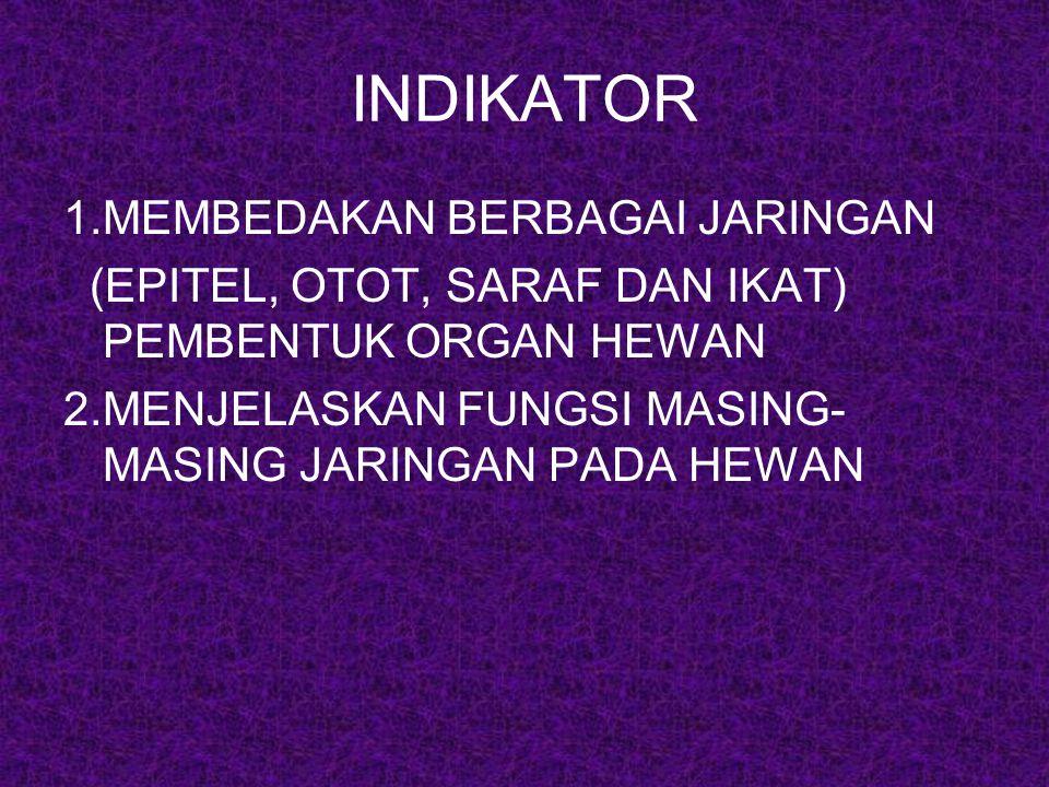 INDIKATOR 1.MEMBEDAKAN BERBAGAI JARINGAN (EPITEL, OTOT, SARAF DAN IKAT) PEMBENTUK ORGAN HEWAN 2.MENJELASKAN FUNGSI MASING- MASING JARINGAN PADA HEWAN