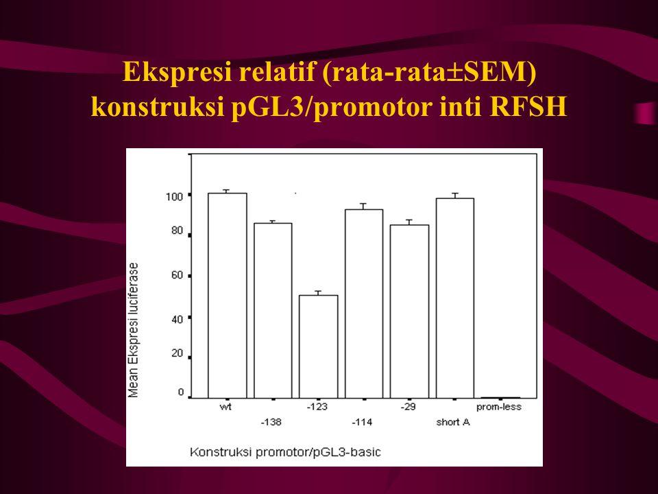 Ekspresi relatif (rata-rata  SEM) konstruksi pGL3/promotor inti RFSH