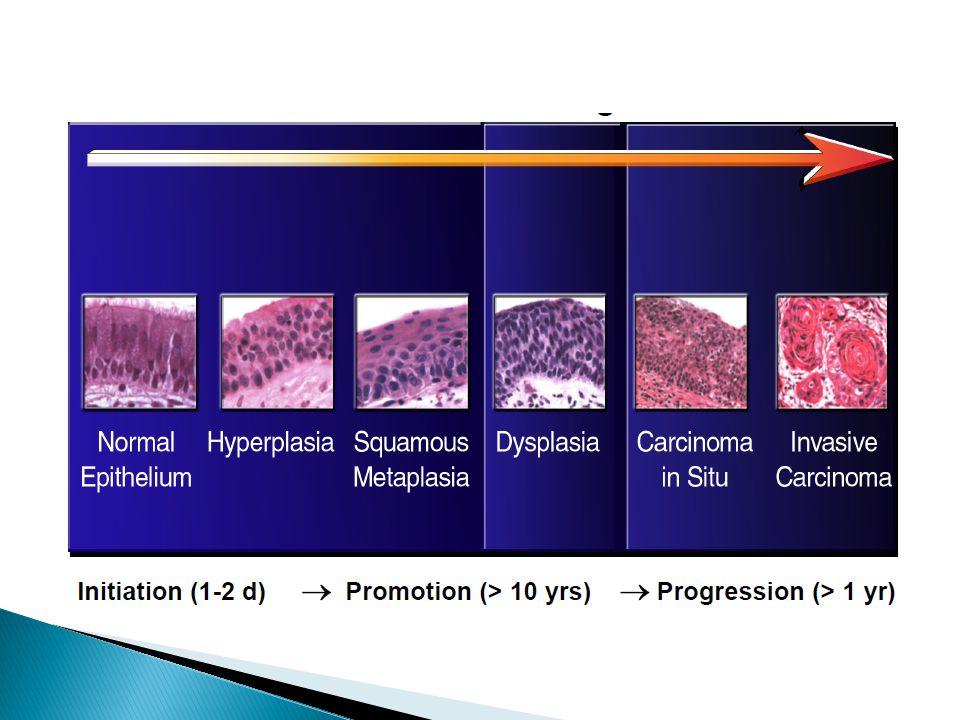 GeneDefectHereditary syndromeCancer ATMDSBAtaxia-telangiectasialymphoma, leukemia, breast MRE11ADSBAT-like disorderlymphoma NBS1DSBNijmegen breakage syndrome lymphoma BRCA1HRFamilial breast cancer 1breast, ovarian, prostate, colon BRCA2HRFamilial breast cancer 2breast (female/male), ovary, prostate, pancreas RECQL2HR?Werner syndromevarious cancers RECQL3HR?Bloom syndromeleukemia, lymphoma RECQL4HR?Rothmund-Thomson syndrome osteosarcoma MSH2MMRHNPCCcolon, rectum, gastric, endometrium, ovarian, urinary organs MLH1 PMS2 MSH6 MLH3 CSA, CSBTCRCocayne's syndromeSkin XPA-XPGNERXeroderma pigmentosumskin Abbreviations: CC, cell cycle control; DSB, double-strand break repair; HR, homologous recombination repair; MMR, mismatch repair; NER, nucleotide excision break repair; NR, not reported; TCR, transcription coupled repair.