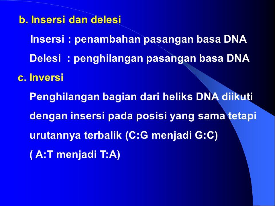 MUTASI 1. Mutasi DNA a. Point Mutation - Transisi (bs.purin diganti bs. Purin A  G) (bs.pirimidin diganti pirimidin T  C) - Transversi (bs. Purin di
