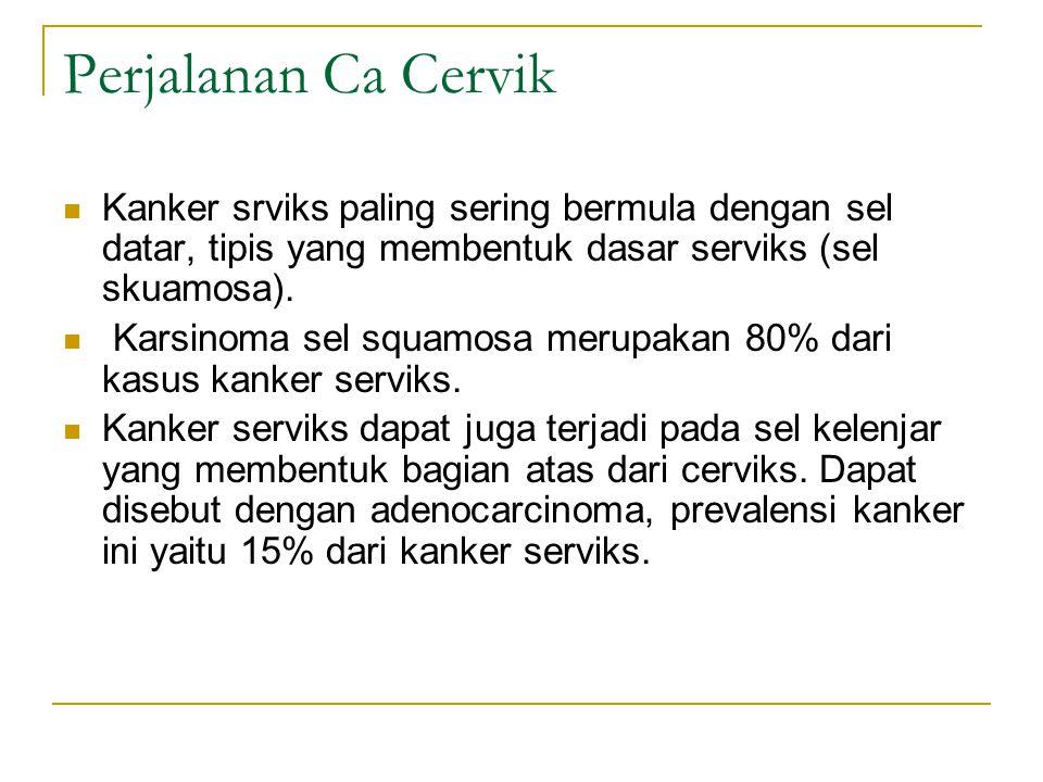 Perjalanan Ca Cervik Kanker srviks paling sering bermula dengan sel datar, tipis yang membentuk dasar serviks (sel skuamosa). Karsinoma sel squamosa m