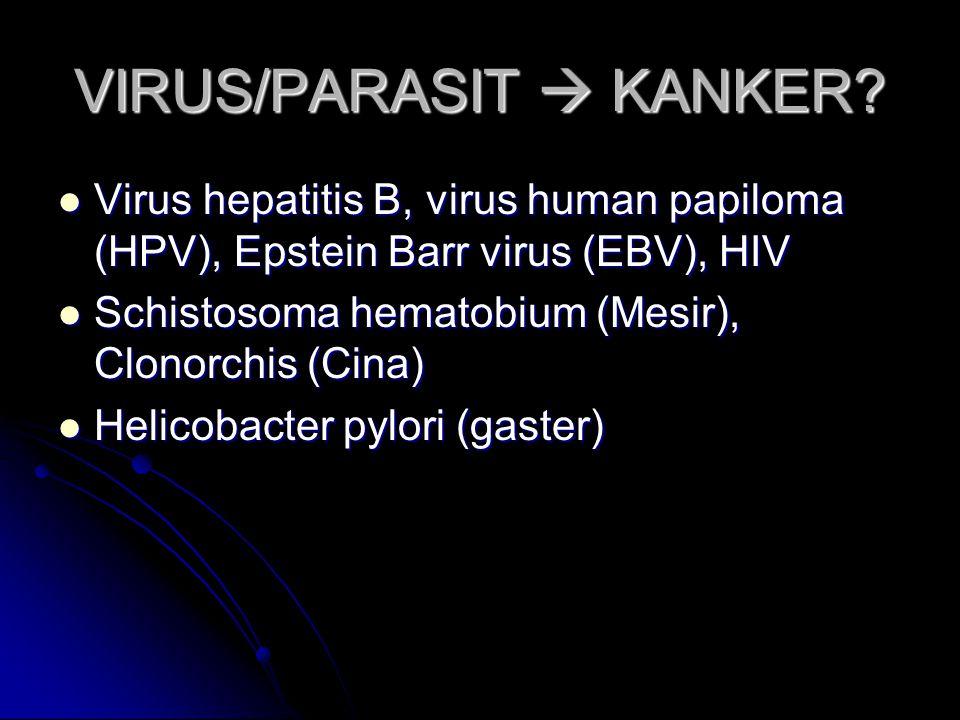 VIRUS/PARASIT  KANKER? Virus hepatitis B, virus human papiloma (HPV), Epstein Barr virus (EBV), HIV Virus hepatitis B, virus human papiloma (HPV), Ep