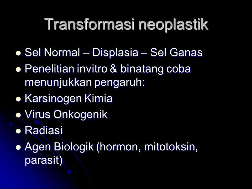 Transformasi neoplastik Sel Normal – Displasia – Sel Ganas Sel Normal – Displasia – Sel Ganas Penelitian invitro & binatang coba menunjukkan pengaruh: