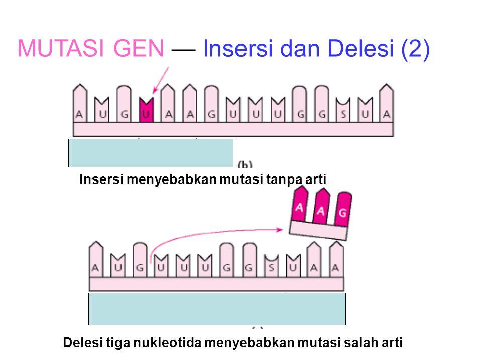 Delesi menyebabkan mutasi salah arti MUTASI GEN — Insersi dan Delesi Lys SU A