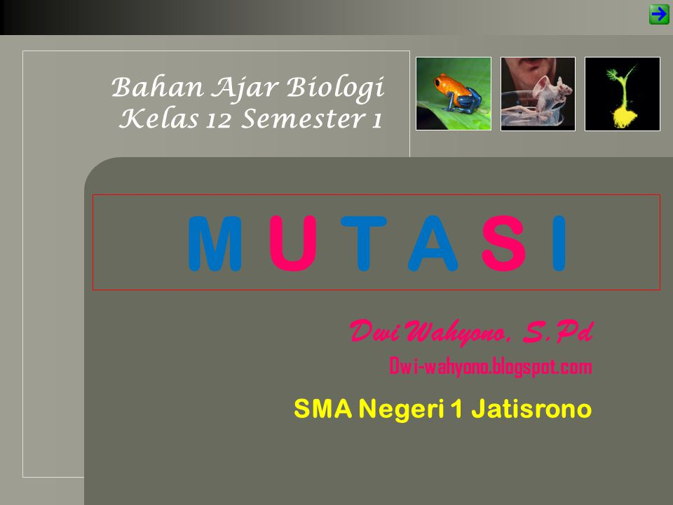 M U T A S I Bahan Ajar Biologi Kelas 12 Semester 1 Dwi Wahyono, S.Pd Dwi-wahyono.blogspot.com SMA Negeri 1 Jatisrono