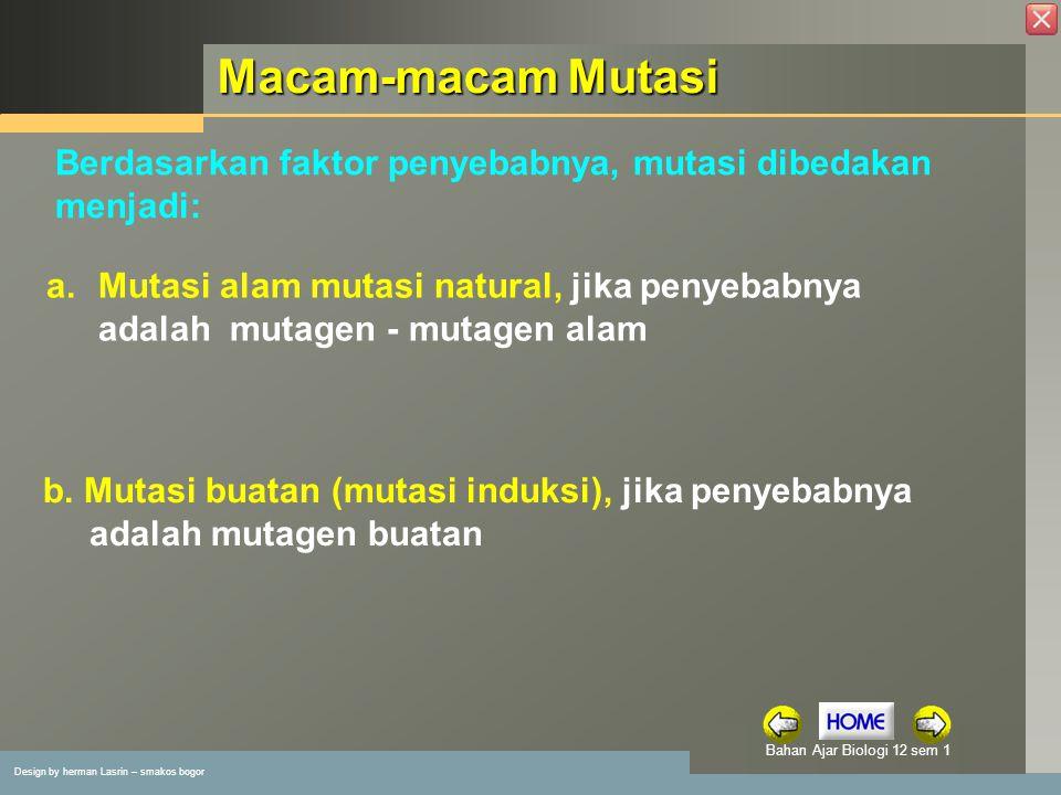 Design by herman Lasrin – smakos bogor Bahan Ajar Biologi 12 sem 1 Macam-macam Mutasi b.