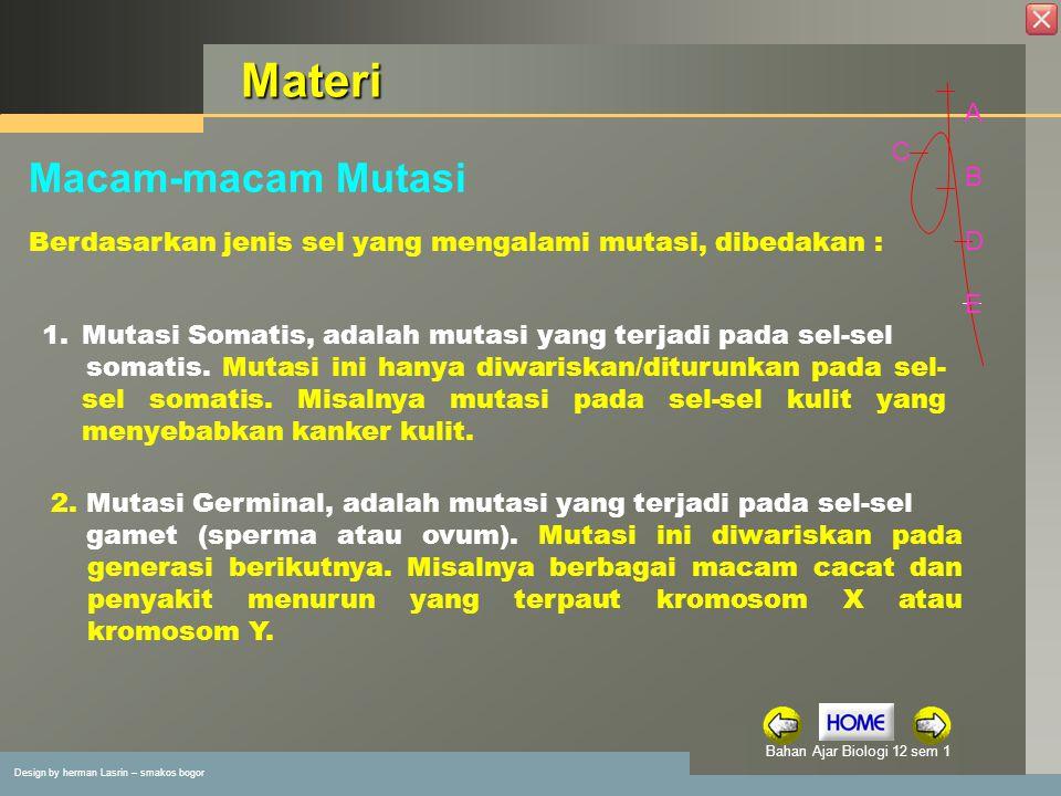 Design by herman Lasrin – smakos bogor Bahan Ajar Biologi 12 sem 1 Latihan 3.