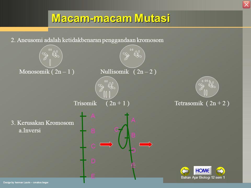 Design by herman Lasrin – smakos bogor Bahan Ajar Biologi 12 sem 1 Macam-macam Mutasi 2.