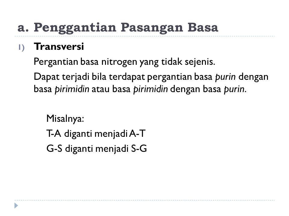 a. Penggantian Pasangan Basa 1) Transversi Pergantian basa nitrogen yang tidak sejenis. Dapat terjadi bila terdapat pergantian basa purin dengan basa