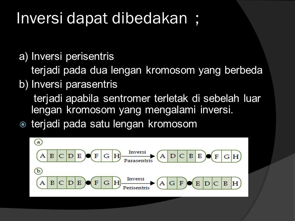 Inversi dapat dibedakan ; a) Inversi perisentris terjadi pada dua lengan kromosom yang berbeda b) Inversi parasentris terjadi apabila sentromer terletak di sebelah luar lengan kromosom yang mengalami inversi.