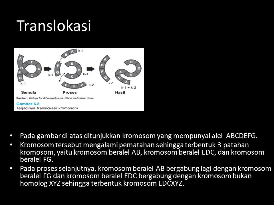 Pada gambar di atas ditunjukkan kromosom yang mempunyai alel ABCDEFG. Kromosom tersebut mengalami pematahan sehingga terbentuk 3 patahan kromosom, yai