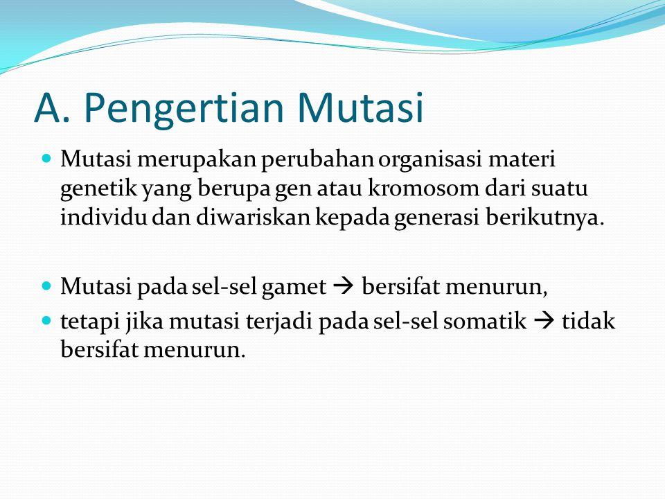A. Pengertian Mutasi Mutasi merupakan perubahan organisasi materi genetik yang berupa gen atau kromosom dari suatu individu dan diwariskan kepada gene