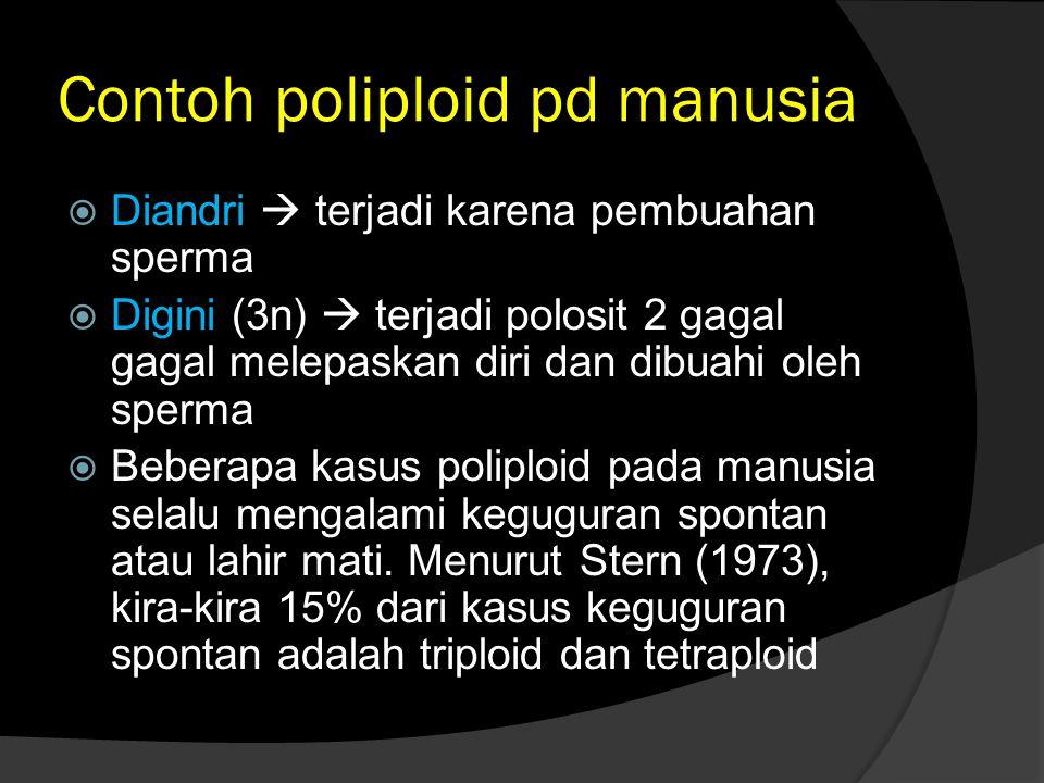 Contoh poliploid pd manusia  Diandri  terjadi karena pembuahan sperma  Digini (3n)  terjadi polosit 2 gagal gagal melepaskan diri dan dibuahi oleh sperma  Beberapa kasus poliploid pada manusia selalu mengalami keguguran spontan atau lahir mati.