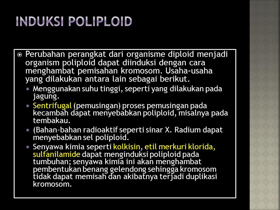  Perubahan perangkat dari organisme diploid menjadi organism poliploid dapat diinduksi dengan cara menghambat pemisahan kromosom.