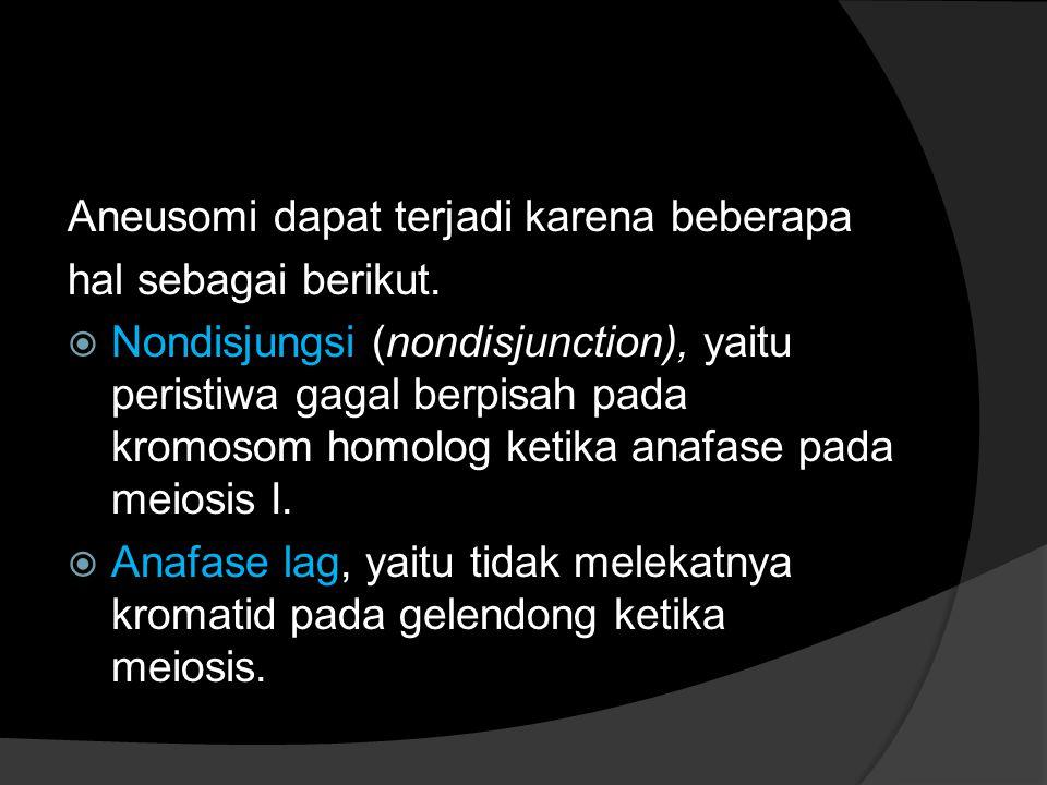 Aneusomi dapat terjadi karena beberapa hal sebagai berikut.